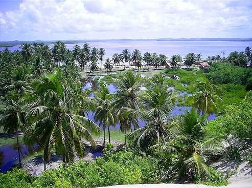 Guia de Turismo do Mangue Seco na Bahia